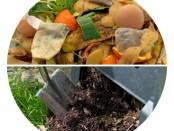Ein Komposthaufen
