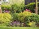 Ein schöner Garten