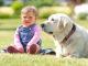 Mädchen mit Hund im Garten