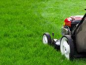 Ein Benzin Rasenmäher wartet auf seinen Check