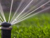 Bewässerungssystem in der Ferienzeit