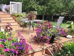 Blumen garten  Blumengarten - Tipps zur Planung und Pflege