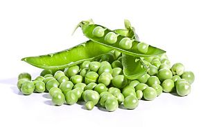 Erbsen Anbauen, Anleitung Zum Anpflanzen & Pflege Erbsen Pflanzen Garten Pflege Tipps